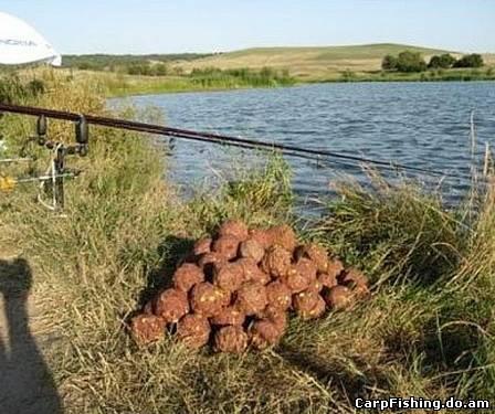 прикормка для ловли карпа весной